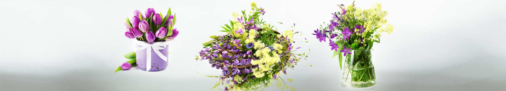 bg-12-flowers-herbs
